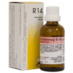 DR.RECKEWEG R-14 QUIETA 50ML GOTAS
