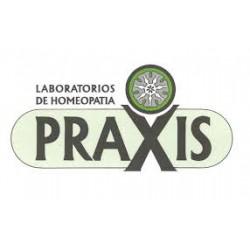 PRAXIS ANSIPRAX GOTAS 60 ML