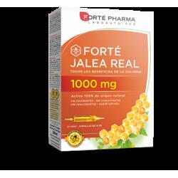 FORTE PHARMA JALEA REAL 1000MG 20 VIALES