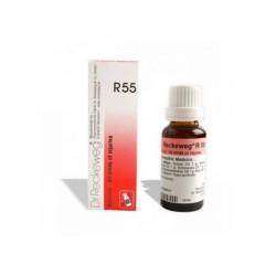 DR RECKEWEG R55 RUTAVINE GOTAS 50ML