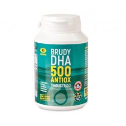 BRUDY DHA 500 ANTIOX 90 CAPS