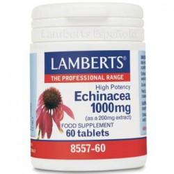 LAMBERTS ECHINACEA 1000MG 60 COMPRIMIDOS