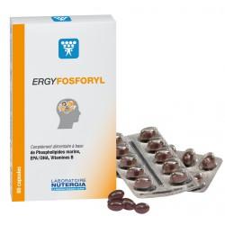NUTERGIA ERGYFOSFORYL 60 CAPSULAS