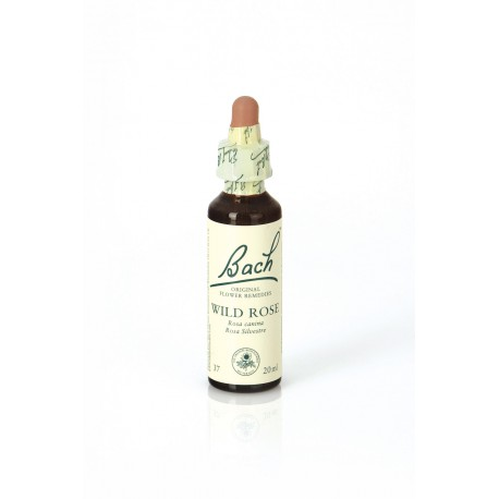 FLORES BACH WILD ROSE 20 ML